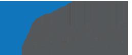 FRANCHINI SERVICE Logo